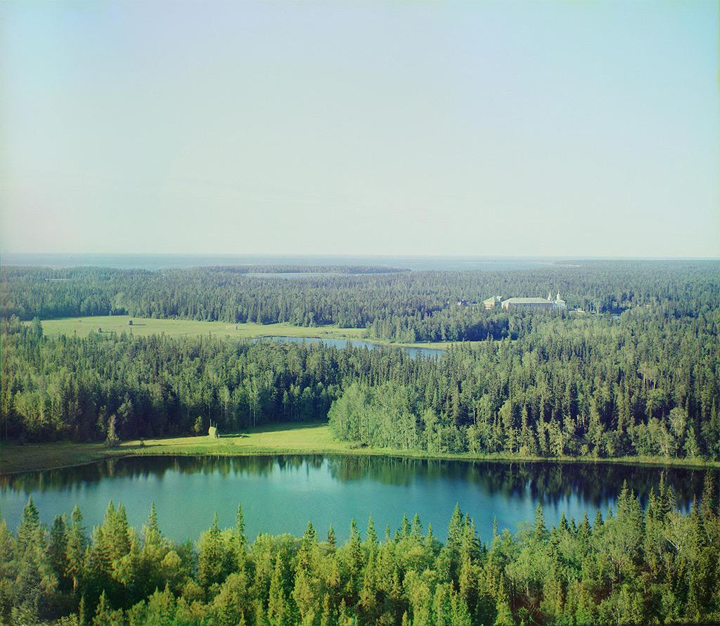 Фото Прокудина - Горского с изображением леса