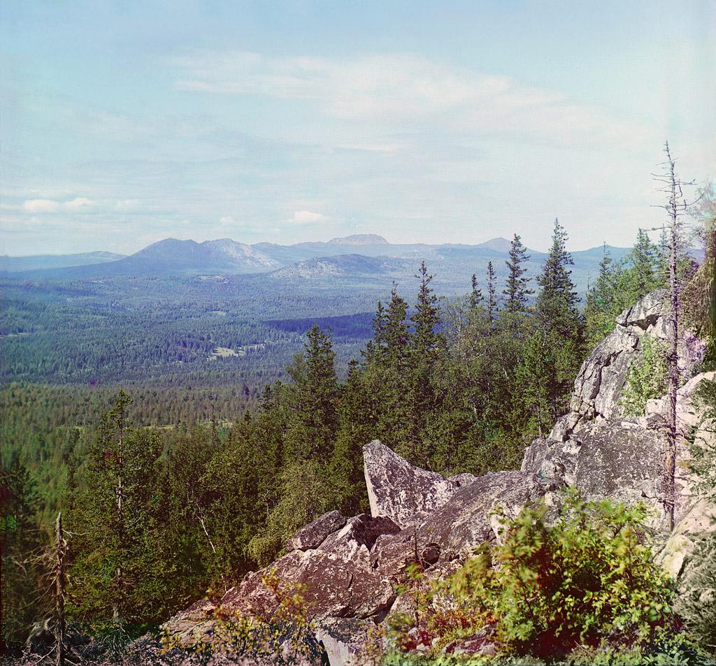 Фотография с лесом Прокудина-Горского
